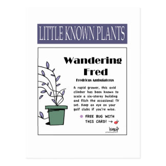 Wandering Fred - PS108 Postcard