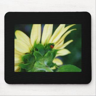Wandering Ladybug Mousepad