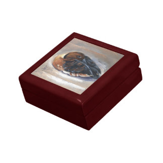 Wandering Whistling Duck Gift Box