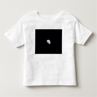 Waning Moon 2 T-shirt