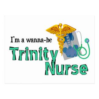 Wanna Be Trinity Nurse Postcard