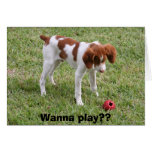 Wanna play?? greeting cards