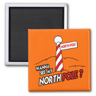 WANNA SEE MY NORTH POLE MAGNET