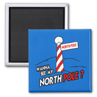 WANNA SEE MY NORTH POLE MAGNETS