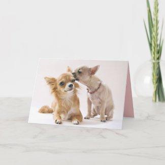 Want'a know a secret? Cute Dog Card card