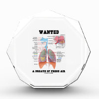 Wanted A Breath Of Fresh Air (Respiratory System) Award