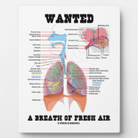 Wanted A Breath Of Fresh Air (Respiratory System) Display Plaques