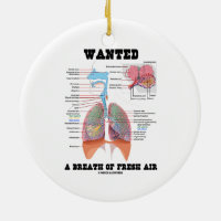 Wanted A Breath Of Fresh Air (Respiratory System) Double-Sided Ceramic Round Christmas Ornament