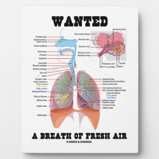 Wanted A Breath Of Fresh Air (Respiratory System) Plaque