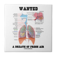 Wanted A Breath Of Fresh Air (Respiratory System) Small Square Tile