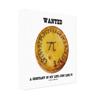 Wanted A Constant In My Life Just Like Pi Canvas Print