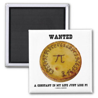 Wanted A Constant In My Life Just Like Pi Magnet