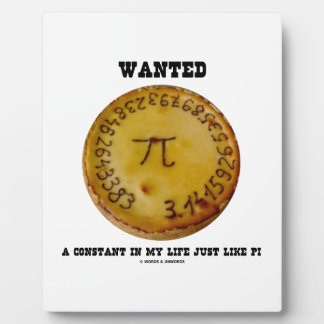 Wanted A Constant In My Life Just Like Pi Plaque