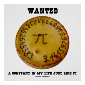 Wanted A Constant In My Life Just Like Pi Poster
