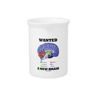 Wanted A New Brain (Anatomical Brain Attitude) Drink Pitchers