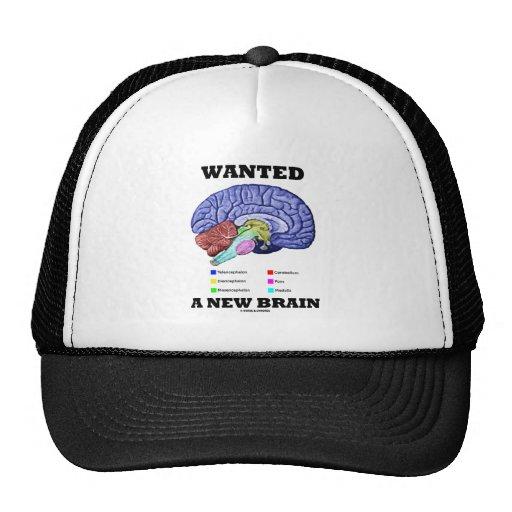 Wanted A New Brain (Anatomical Brain Attitude) Mesh Hats