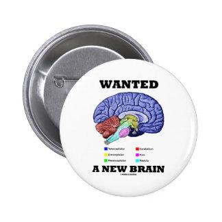 Wanted A New Brain (Anatomical Brain Attitude) Pinback Button