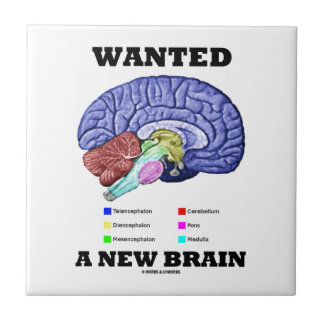 Wanted A New Brain (Anatomical Brain Attitude) Ceramic Tiles