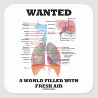 Wanted A World Filled With Fresh Air (Respiratory) Square Sticker