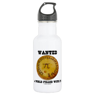 Wanted A World Filled With Pi (Pi Pie Math Humor) Stainless Steel Water Bottle