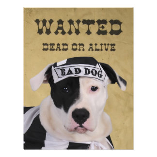 Wanted dead or alive letterhead