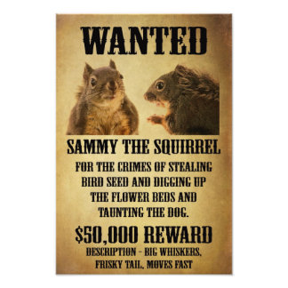 Wanted Poster with Squirrel Photograph