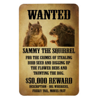 Wanted Poster with Squirrel Rectangular Photo Magnet
