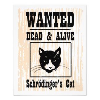 Wanted Schrodinger's Cat Flyer