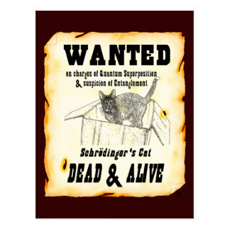 WANTED: Schrodinger's Cat Postcard