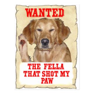 WANTED - THE FELLA THAT SHOT MY PAW - DOG GR POSTCARD