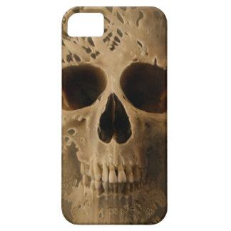 wanworks iPhone 5 cases