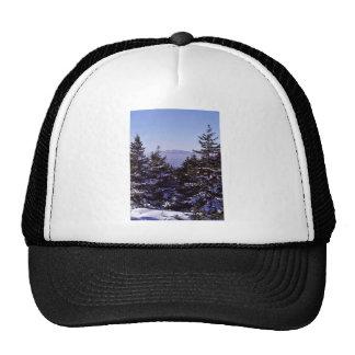 Wapack National Wildlife Refuge, winter scenic Trucker Hat