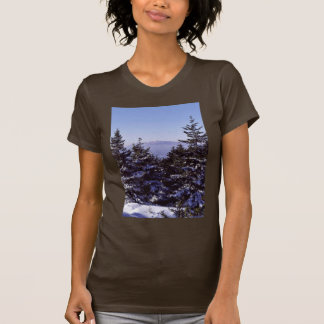 Wapack National Wildlife Refuge, winter scenic Shirts