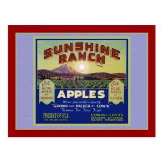 Wapato Washington Apples Postcard