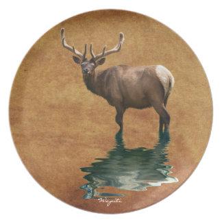 Wapiti (Bull Elk) Wildlife-lover Art Plate