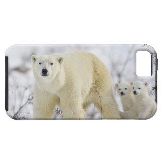 Wapusk National Park, Canada. iPhone SE/5/5s Case