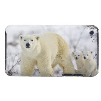 Wapusk National Park, Canada. iPod Case-Mate Case