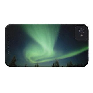 Wapusk National Park Case-Mate iPhone 4 Case