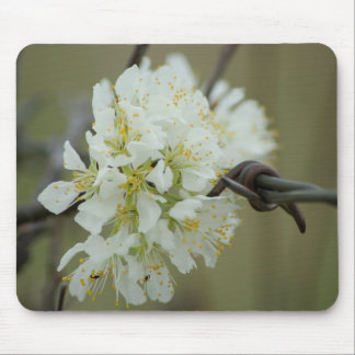 War and Peace ~ Flower and Barbed Wire Mousepad