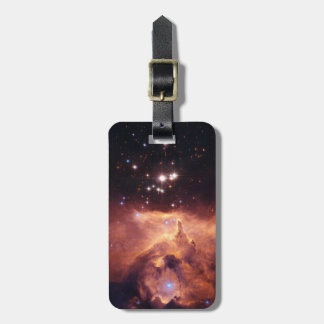 War and Peace Nebula Bag Tag