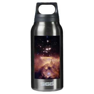 War and Peace Nebula Insulated Water Bottle