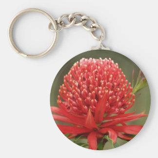 Waratah in bloom, Australia flowers Keychain