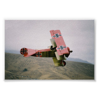 Warbirds clásico: Triplano de Fokker Dr1 Póster