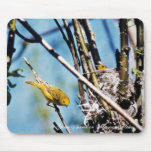 Warbler and Nest Mousepad