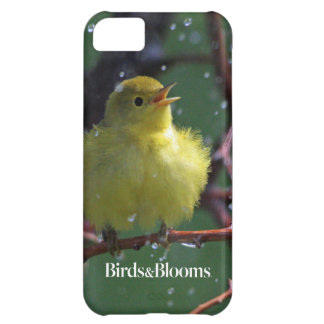 Warbler Cover For iPhone 5C