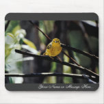 Warbler Mouse Pads