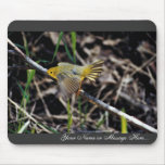 Warbler on Branch Mouse Pads