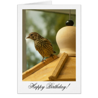 Warbler on the Lookout; Happy Birthday Card
