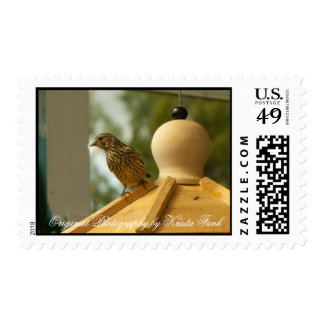 Warbler on the Lookout Postage