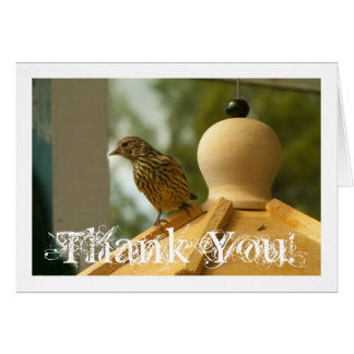 Warbler on the Lookout; Thank You Card